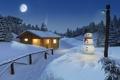 Картинка лес, Зима, домик, забор, свет, снег, Луна