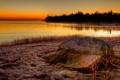 Картинка небо, трава, деревья, озеро, берег, камень, вечер