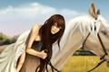 Картинка поле, трава, девушка, конь, лошадь, платье, арт