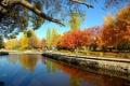 Картинка осень, Город, Россия, Тольятти, детский парк