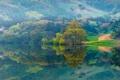 Картинка дорога, деревья, горы, озеро, склон, беседка