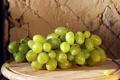Картинка листья, ягода, тарелка, виноград, гроздь, grapes
