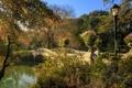 Картинка цветы. мост, пейзаж. природа, фонарь, небо