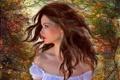 Картинка осень, листья, девушка, деревья, лицо, фон, волосы