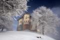 Картинка зима, пейзаж, дом, дерево