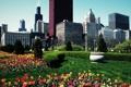 Картинка лето, цветы, парк, небоскребы, чикаго, Chicago, кусты