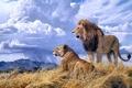 Картинка животные, облака, гора, лев, живопись, львица, Lindsay B. Scott