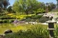 Картинка трава, деревья, пруд, камни, сад, Австралия, кусты