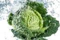 Картинка капли, Cabbage, water, drops, vegetable, вода, свежесть