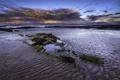 Картинка песок, пляж, водоросли, камни, океан, рассвет, берег