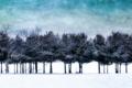 Картинка деревья, пейзаж, стиль, фон