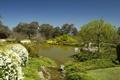 Картинка камни, пруд, Cowra Japanese Garden, кусты, деревья, сад, Австралия