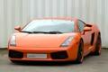 Картинка галлардо, суперкар, оранжевый, ламборгини, эдо компетишн, edo competition lamborghini gallardo