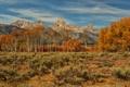 Картинка осень, небо, облака, деревья, горы, кусты