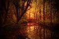 Картинка осень, природа, парк, канал, мостик