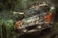 Картинка лес, машины, Crash, бампер