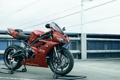 Картинка Triumph, Bikes, Daytona 675, Motocycles