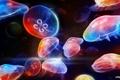 Картинка Dancing Underwater, разноцветные, медузы