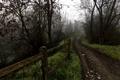 Картинка дорога, осень, забор