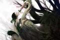 Картинка лес, девушка, птица, бабочка, перья, фэнтези, арт