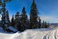 Картинка зима, лес, небо, снег, деревья, дом, ель