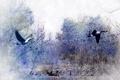 Картинка птицы, природа, картина