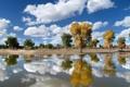 Картинка осень, небо, облака, деревья, пейзаж, отражение, река