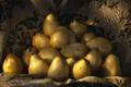 Картинка фон, фрукты, груши, солнечный свет