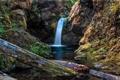 Картинка мох, река, Pamela Winders, водопад, горы, бревна
