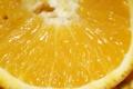 Картинка апельсин, цитрусовые, желтенький