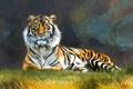 Картинка Тигр, арт, Tiger