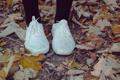 Картинка листья, колготки, кеды, осень, обувь