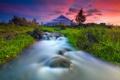 Картинка небо, трава, закат, река, ручей, камни, поток