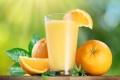 Картинка апельсины, мята, orange, orange juice, апельсиновый сок, mint