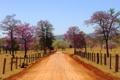 Картинка дорога, поле, небо, деревья, цветы, горы, забор