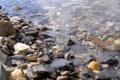 Картинка вода, макро, галька, берег, Камни, камушки, камешки