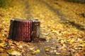 Картинка осень, листья, музыкальный инструмент, гармонь