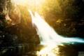 Картинка лес, Aaron Woodall, солнце, водопад, photographer, засвет, красота