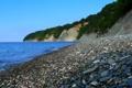 Картинка море, пляж, камни, кусты
