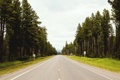 Картинка природа, небо, горизонт, деревья, дорога