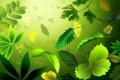 Картинка трава, листья, ветки