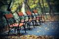 Картинка листья, парк, дорожка, лавки