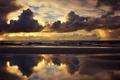 Картинка чайки, облака, пляж, небо, море