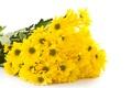 Картинка цветы, букет, желтые, хризантемы
