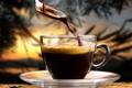 Картинка кофейное зерно, ложка, кофе, аромат