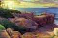 Картинка море, солнце, деревья, пейзаж, скалы