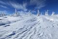 Картинка зима, небо, деревья, пейзаж, природа, холм