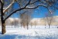 Картинка зима, небо, снег, деревья, горы, люди