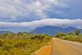 Картинка дорога, небо, облака, деревья, горы, тучи, кусты