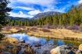 Картинка лес, вода, деревья, горы, ручей, камни